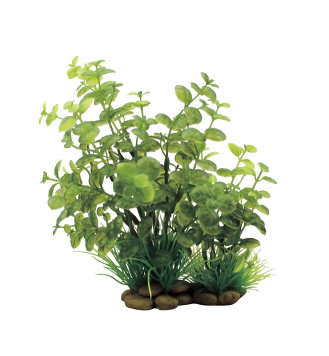 Растение для аквариума ArtUniq Кардамин, высота 20 см0120710Растение для аквариума ArtUniq Кардамин, высота 20 см