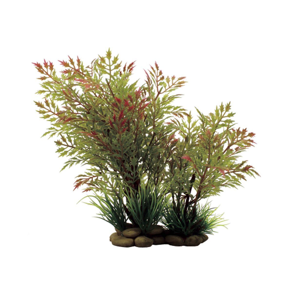 Растение для аквариума ArtUniq Папоротник водяной красно-зеленый, высота 20 см0120710Растение для аквариума ArtUniq Папоротник водяной красно-зеленый, высота 20 см