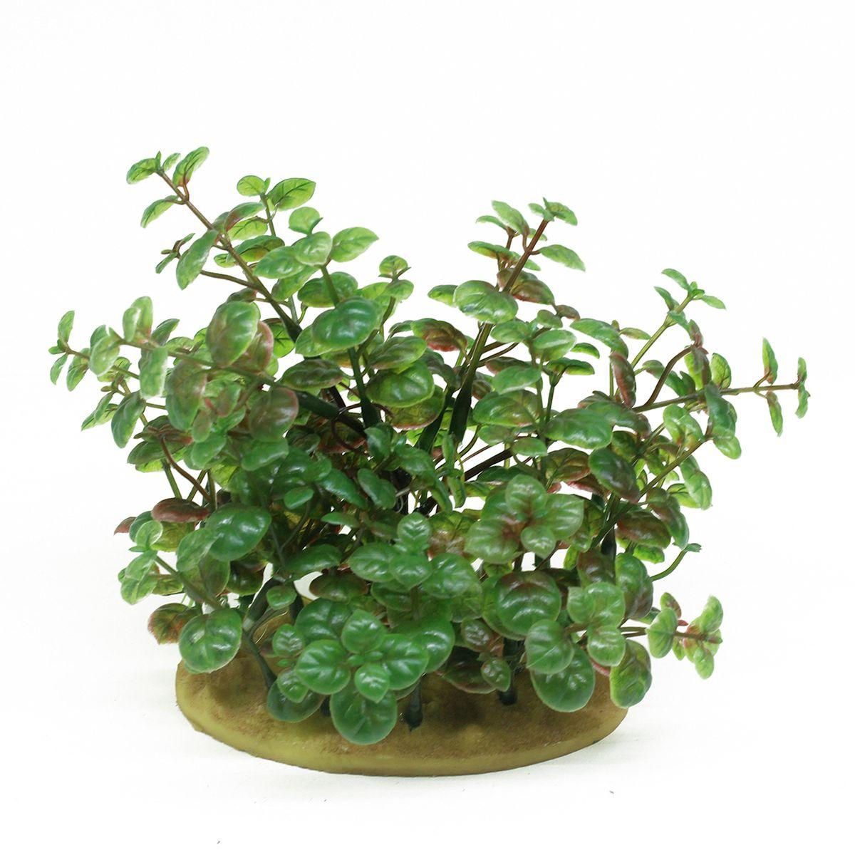 Растение для аквариума ArtUniq Кардамин, высота 15 см0120710Растение для аквариума ArtUniq Кардамин, высота 15 см
