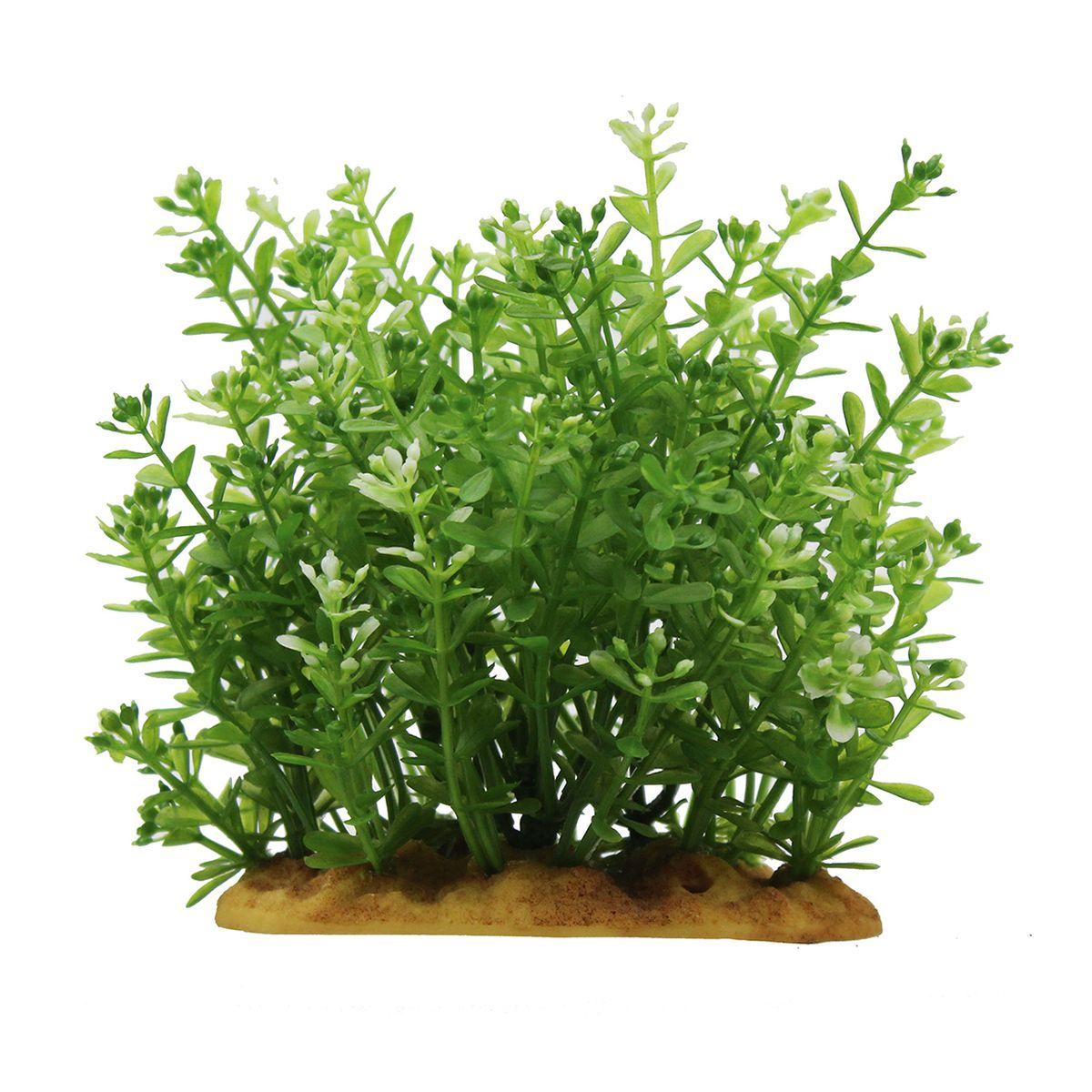 Растение для аквариума ArtUniq Ротала, высота 15 см0120710Композиция из искусственных растений ArtUniq превосходно украсит и оживит аквариум.Растения - это важная часть любой композиции, они помогут вдохнуть жизнь в ландшафт любого аквариума или террариума. А их сходствос природными порадует даже самых взыскательных ценителей.