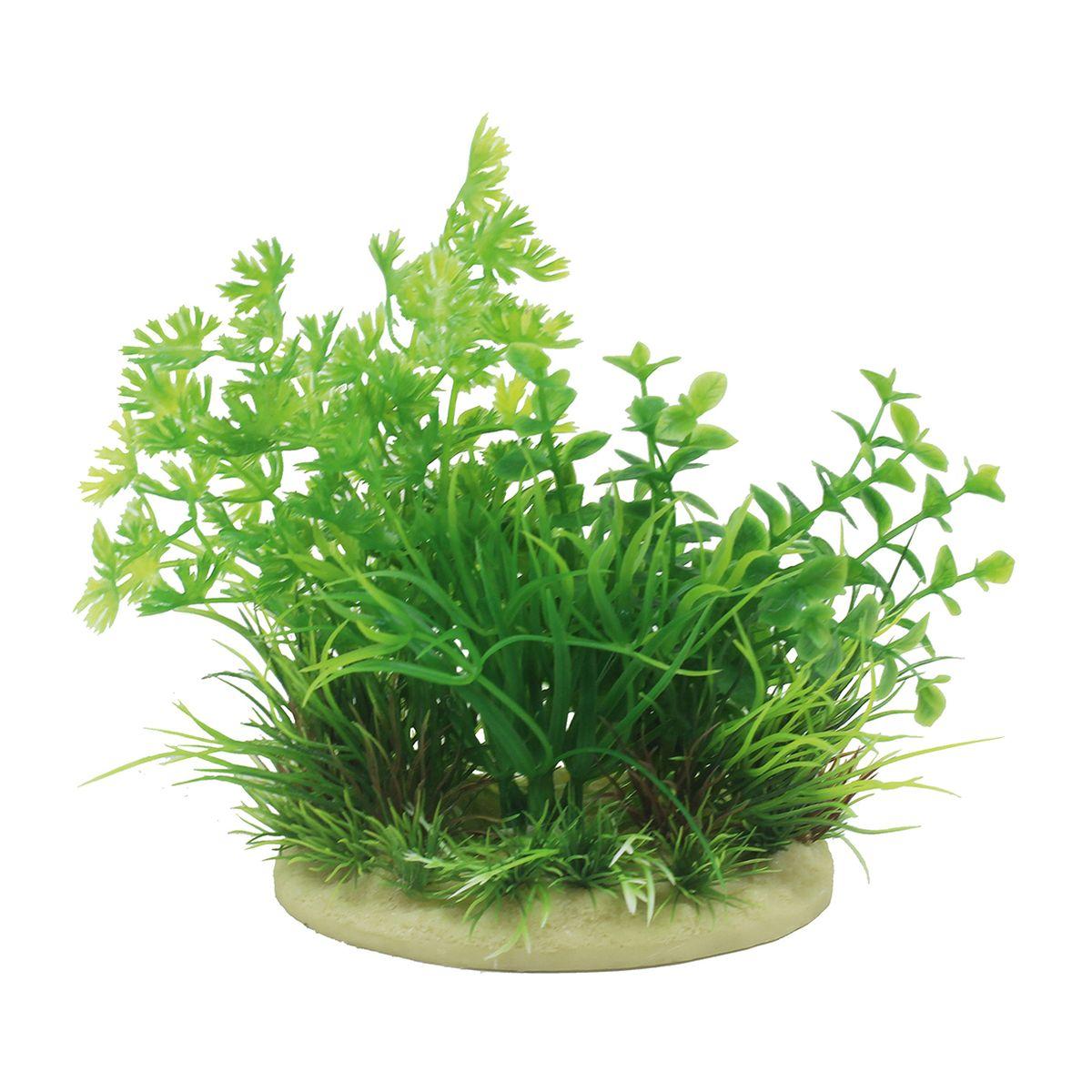 Растение для аквариума ArtUniq Лютик водный, высота 15 см. ART-11601160120710Композиция из искусственных растений ArtUniq превосходно украсит и оживит аквариум.Растения - это важная часть любой композиции, они помогут вдохнуть жизнь в ландшафт любого аквариума или террариума. А их сходствос природными порадует даже самых взыскательных ценителей.
