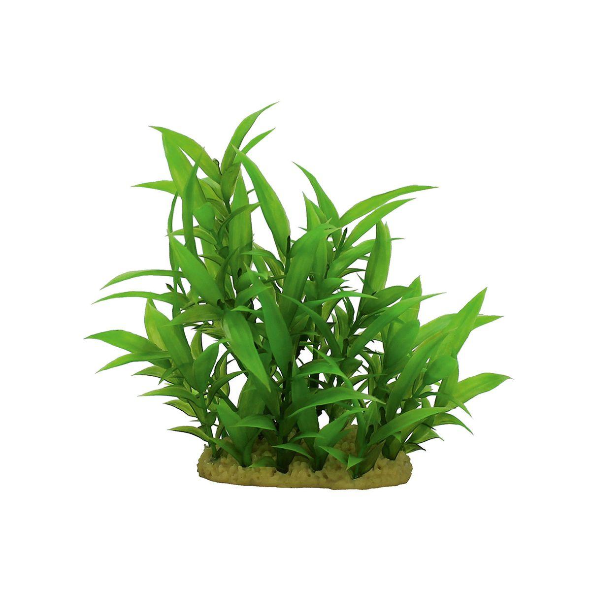 Растение для аквариума ArtUniq Гигрофила сиамская, высота 15 см. ART-11601180120710Композиция из искусственных растений ArtUniq превосходно украсит и оживит аквариум.Растения - это важная часть любой композиции, они помогут вдохнуть жизнь в ландшафт любого аквариума или террариума. А их сходствос природными порадует даже самых взыскательных ценителей.