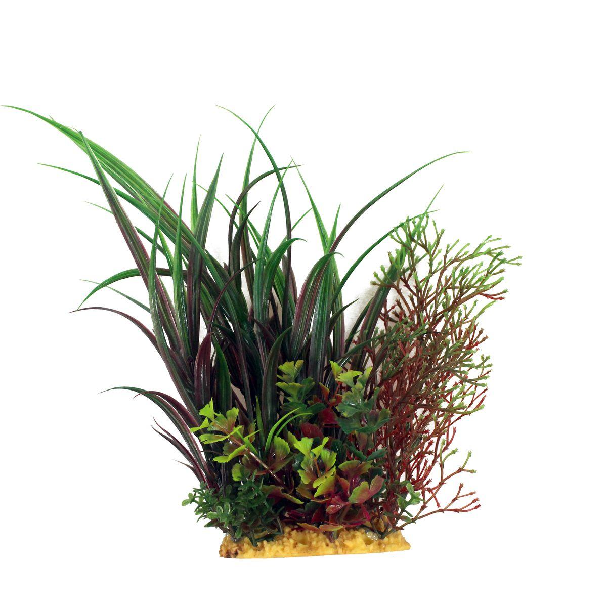 Растение для аквариума ArtUniq Офиопогон, высота 20 см0120710Композиция из искусственных растений ArtUniq превосходно украсит и оживит аквариум.Растения - это важная часть любой композиции, они помогут вдохнуть жизнь в ландшафт любого аквариума или террариума. А их сходствос природными порадует даже самых взыскательных ценителей.