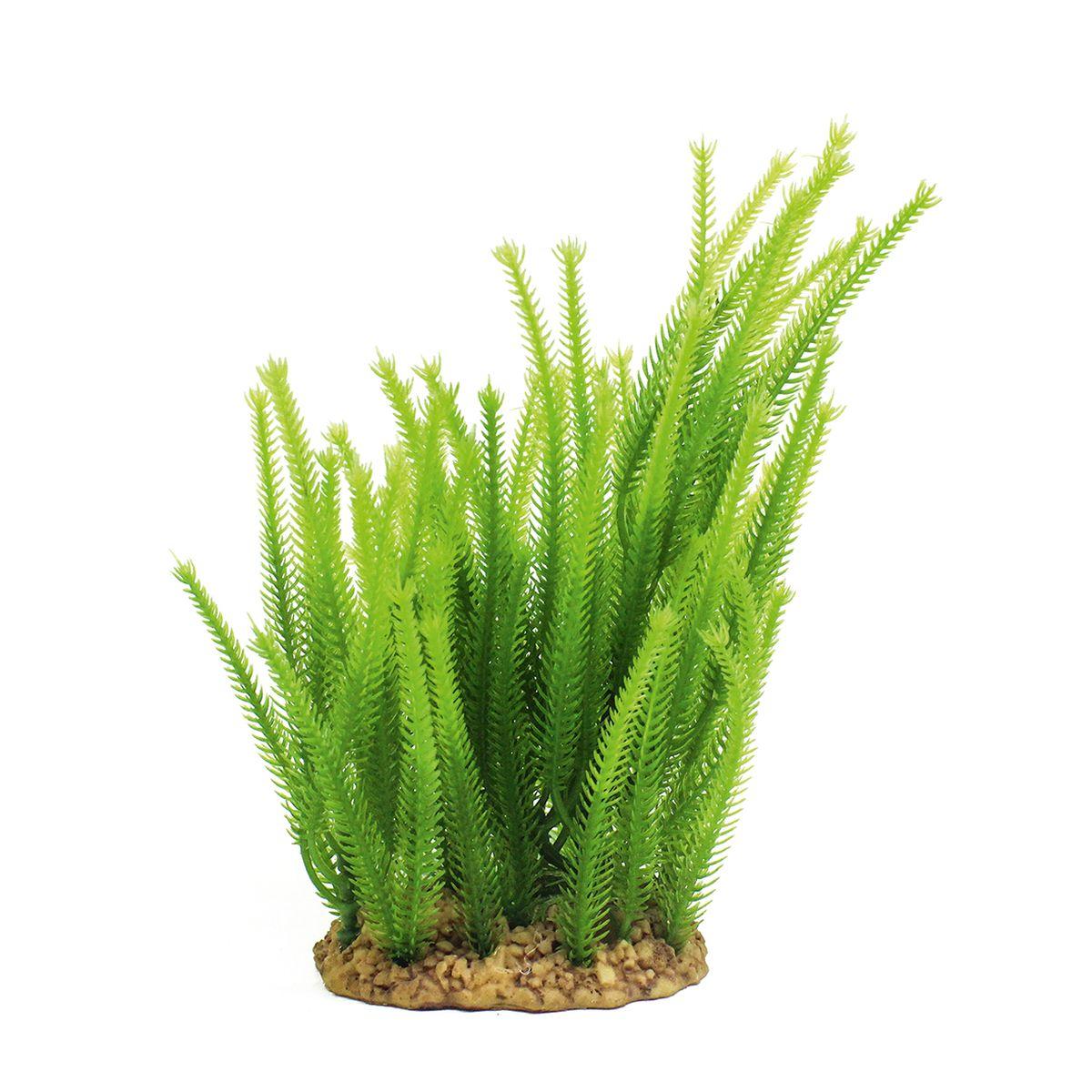 Растение для аквариума ArtUniq Майяка, высота 20 см0120710Композиция из искусственных растений ArtUniq превосходно украсит и оживит аквариум.Растения - это важная часть любой композиции, они помогут вдохнуть жизнь в ландшафт любого аквариума или террариума. Лучше всего это сделают яркие и сочные цвета искусственных растений серии ArtPlants. А их сходствос природными порадует даже самых взыскательных ценителей.