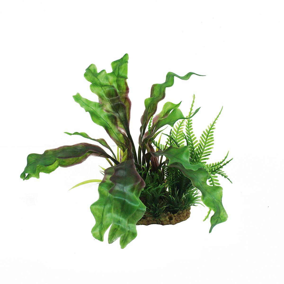 Растение для аквариума ArtUniq Апоногетон, высота 20 см0120710Композиция из искусственных растений ArtUniq превосходно украсит и оживит аквариум.Растения - это важная часть любой композиции, они помогут вдохнуть жизнь в ландшафт любого аквариума или террариума. А их сходствос природными порадует даже самых взыскательных ценителей.