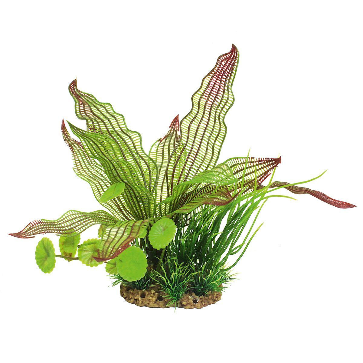 Растение для аквариума ArtUniq Апоногетон мадагаскарский, высота 20 см0120710Композиция из искусственных растений ArtUniq превосходно украсит и оживит аквариум.Растения - это важная часть любой композиции, они помогут вдохнуть жизнь в ландшафт любого аквариума или террариума. А их сходствос природными порадует даже самых взыскательных ценителей.