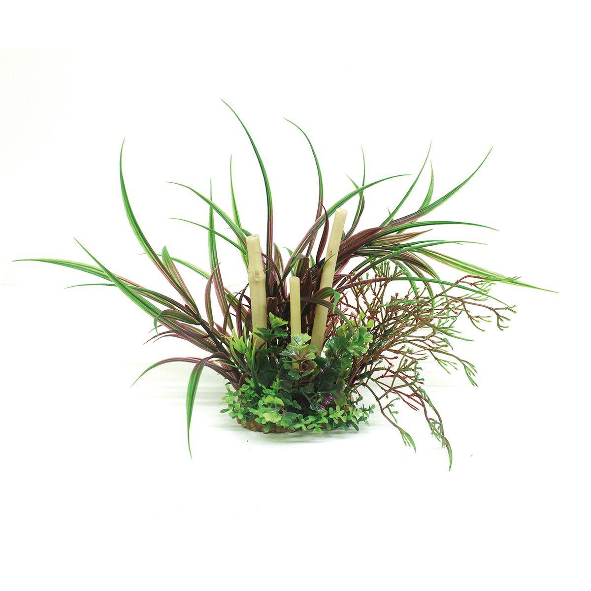 Композиция из растений для аквариума ArtUniq Лагаросифон мадагаскарский красный с бамбуком, высота 20 см101246Композиция из искусственных растений ArtUniq превосходно украсит и оживит аквариум.Растения - это важная часть любой композиции, они помогут вдохнуть жизнь в ландшафт любого аквариума или террариума. Композиция является точной копией природного растения.