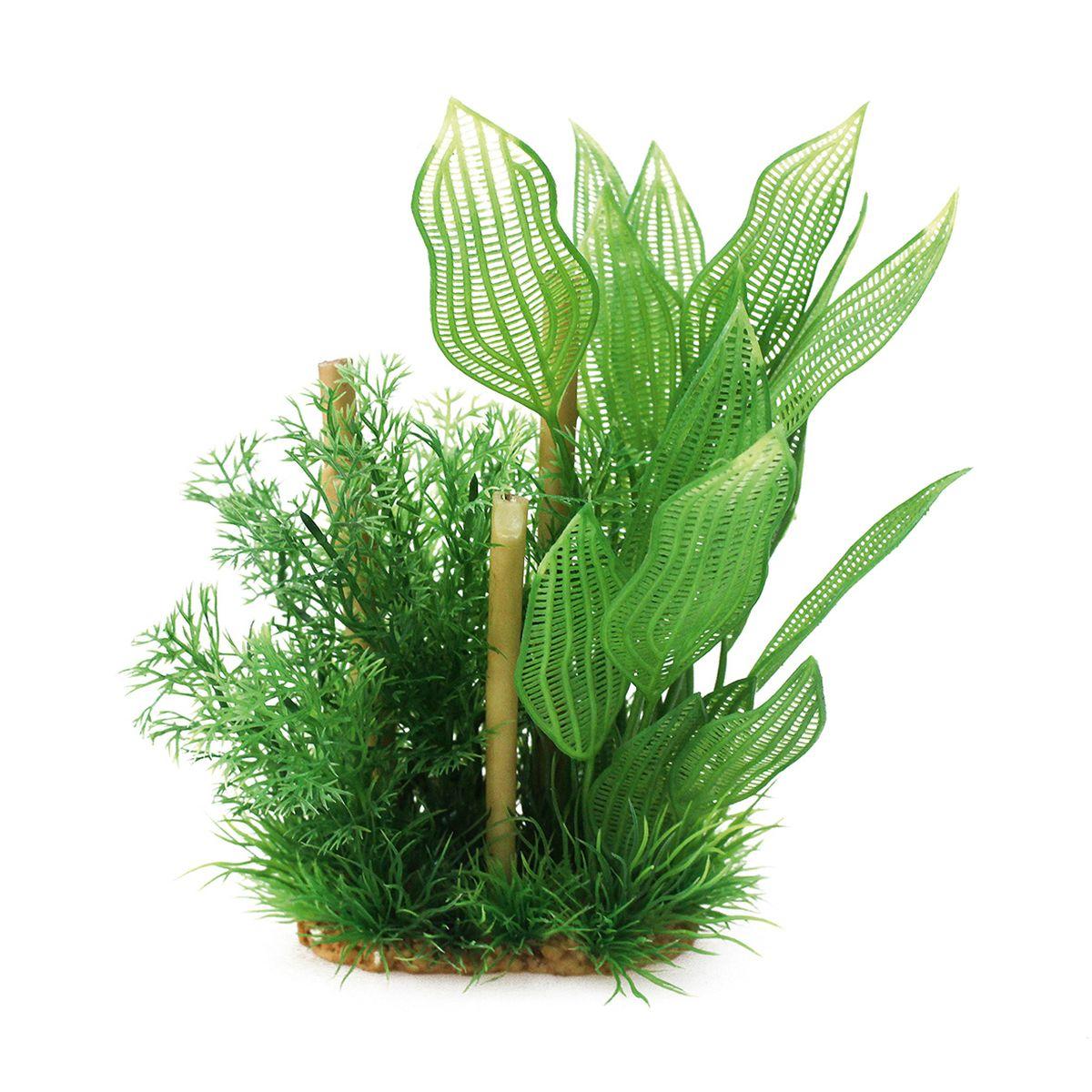 Композиция из растений для аквариума ArtUniq Апоногетон с бамбуком, высота 20 смART-1160505Композиция из искусственных растений ArtUniq превосходно украсит и оживит аквариум.Растения - это важная часть любой композиции, они помогут вдохнуть жизнь в ландшафт любого аквариума или террариума.Композиция является точной копией природного растения.