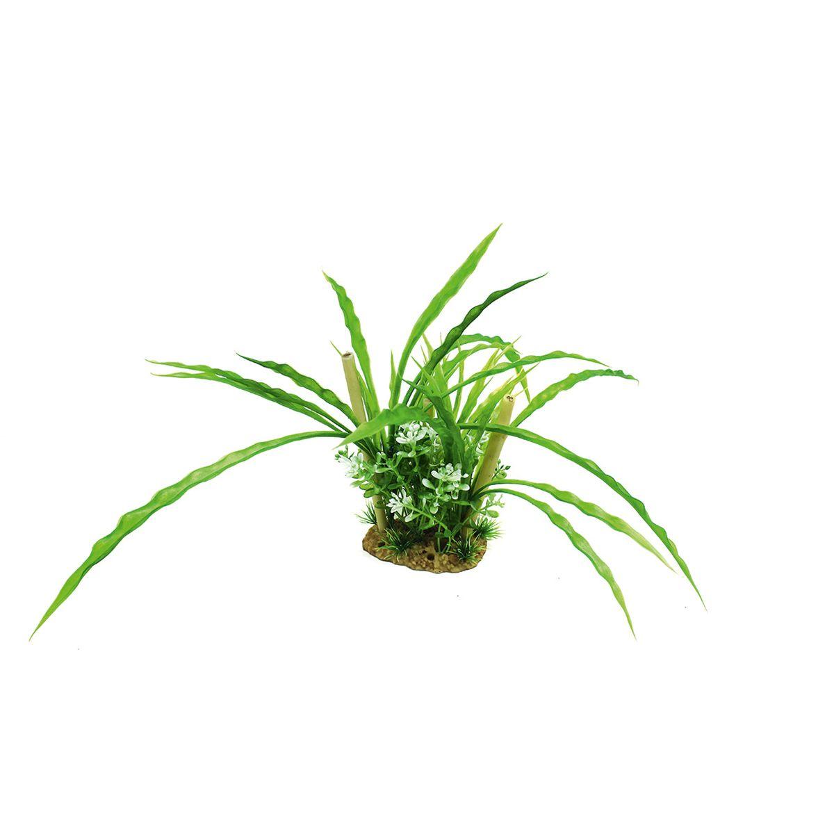 Композиция из растений для аквариума ArtUniq Криптокорина с бамбуком, высота 20 см0120710Композиция из искусственных растений ArtUniq превосходно украсит и оживит аквариум.Растения - это важная часть любой композиции, они помогут вдохнуть жизнь в ландшафт любого аквариума или террариума.Композиция является точной копией природного растения.