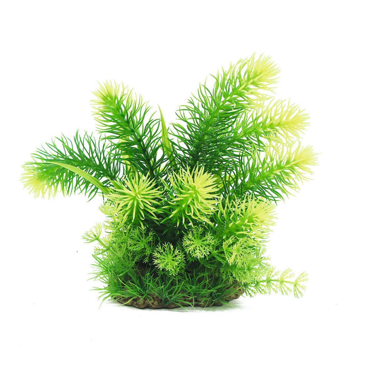 Растение для аквариума ArtUniq Погостемон эректус, высота 20 см0120710Композиция из искусственных растений ArtUniq превосходно украсит и оживит аквариум.Растения - это важная часть любой композиции, они помогут вдохнуть жизнь в ландшафт любого аквариума или террариума. А их сходствос природными порадует даже самых взыскательных ценителей.
