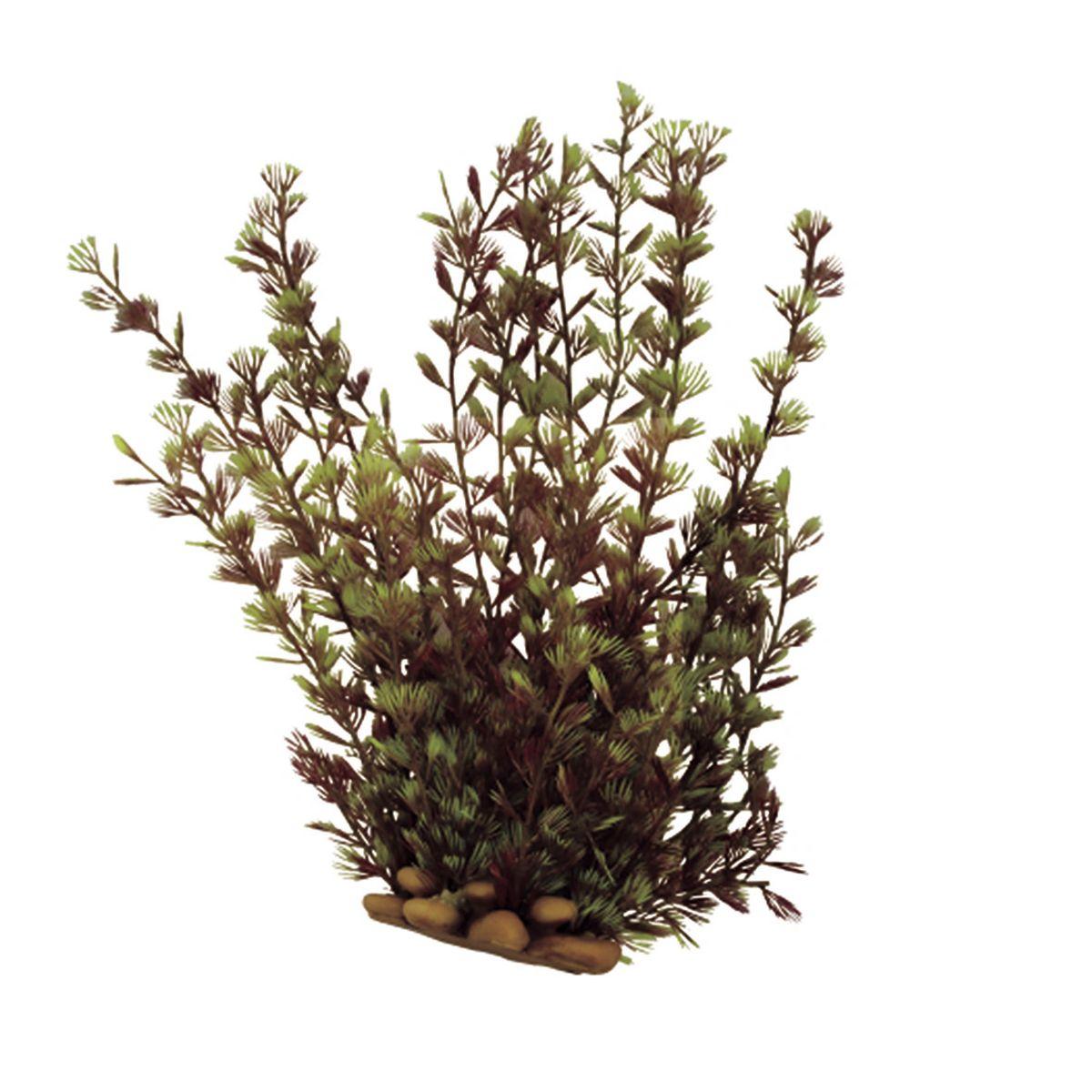Растение для аквариума ArtUniq Кабомба, высота 20 см0120710Растение для аквариума ArtUniq Кабомба, высота 20 см