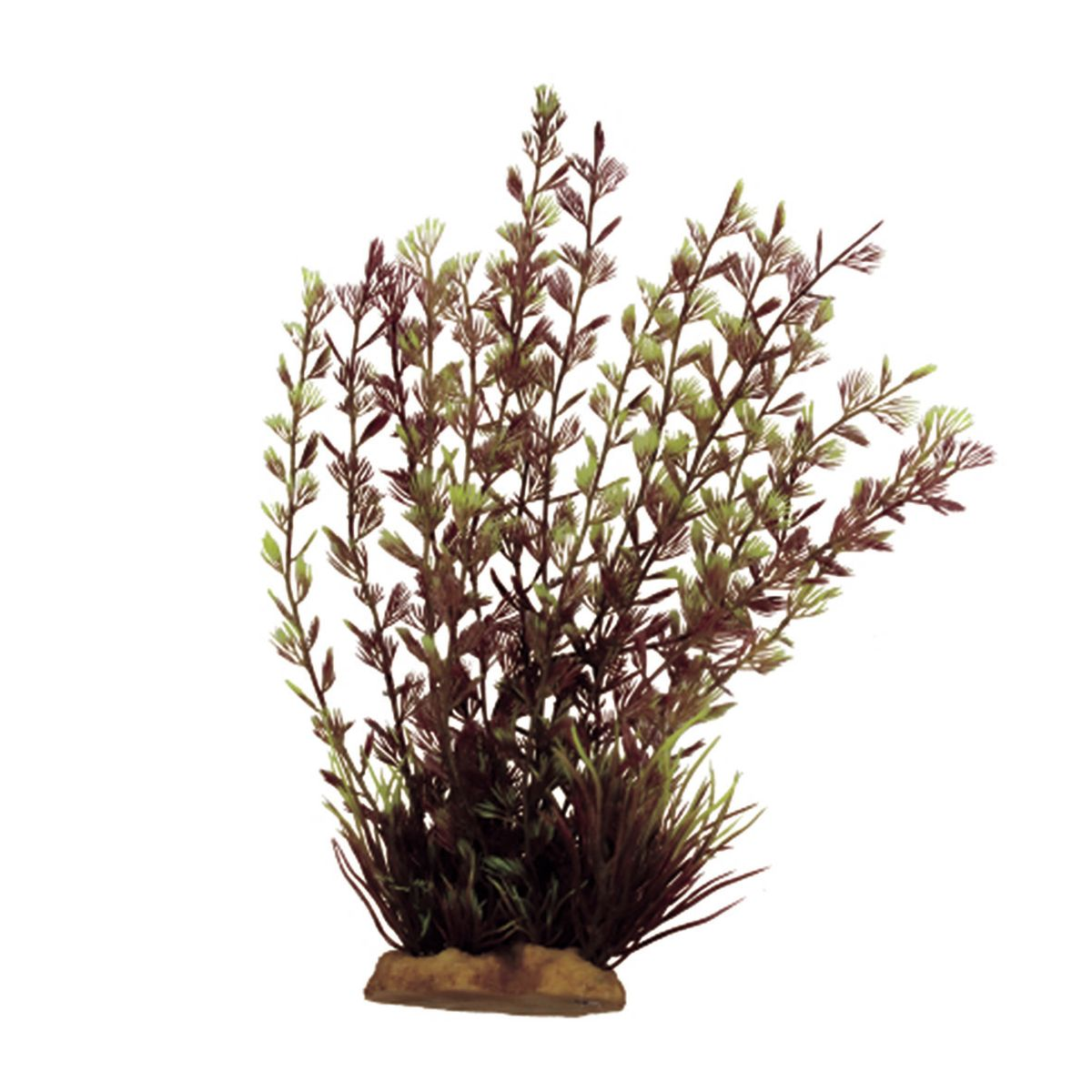 Растение для аквариума ArtUniq Кабомба вильчатая красная, высота 20 см0120710Растение для аквариума ArtUniq Кабомба вильчатая красная, высота 20 см