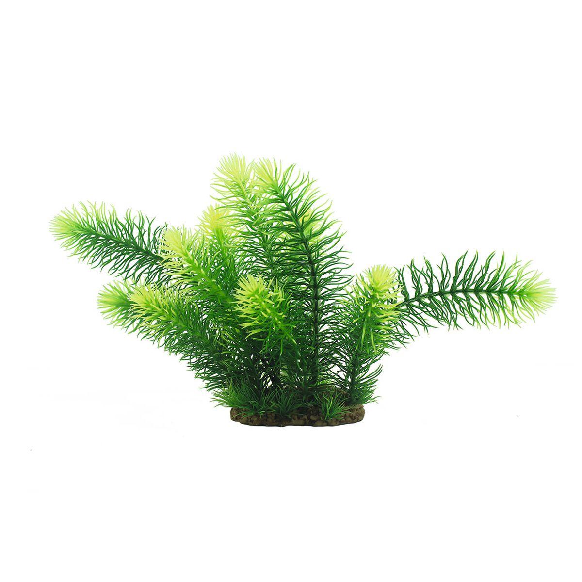 Растение для аквариума ArtUniq Погостемон эректус, высота 25 см0120710Растение для аквариума ArtUniq Погостемон эректус, высота 25 см
