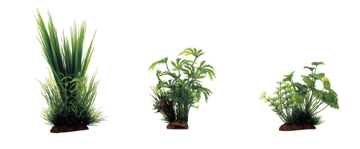 Растение для аквариума ArtUniq Акорус, абутилон, щитолистник, высота 10-20 см, 3 шт0120710Растение для аквариума ArtUniq Акорус, абутилон, щитолистник, высота 10-20 см, 3 шт