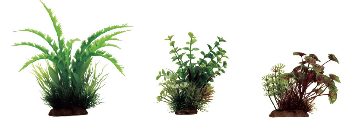 Набор растений для аквариума ArtUniq Дизиготека, бакопа, щитолистник красно-зеленый, высота 10-20 см, 3 шт0120710Композиция из искусственных растений ArtUniq превосходно украсит и оживит аквариум.Растения - это важная часть любой композиции, они помогут вдохнуть жизнь в ландшафт любого аквариума или террариума. А их сходствос природными порадует даже самых взыскательных ценителей.