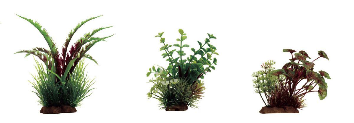 Набор растений для аквариума ArtUniq Дизиготека красно-зеленая, бакопа, щитолистник красно-зеленый, высота 10-20 см, 3 шт0120710Композиция из искусственных растений ArtUniq превосходно украсит и оживит аквариум.Растения - это важная часть любой композиции, они помогут вдохнуть жизнь в ландшафт любого аквариума или террариума. А их сходствос природными порадует даже самых взыскательных ценителей.