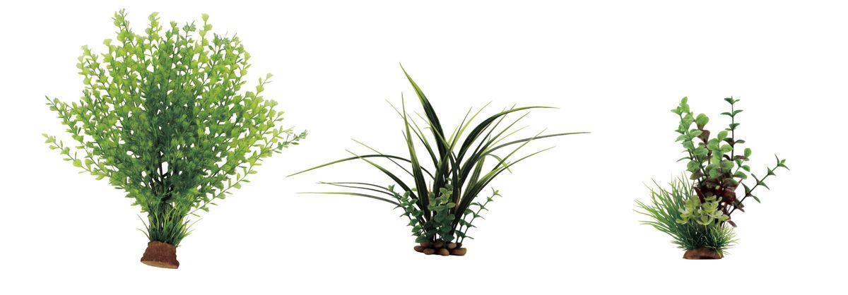 Набор растений для аквариума ArtUniq Кариота, акорус, лизимахия, высота 15-35 см, 3 штART-1170403Композиция из искусственных растений ArtUniq превосходно украсит и оживит аквариум.Растения - это важная часть любой композиции, они помогут вдохнуть жизнь в ландшафт любого аквариума или террариума. А их сходствос природными порадует даже самых взыскательных ценителей.