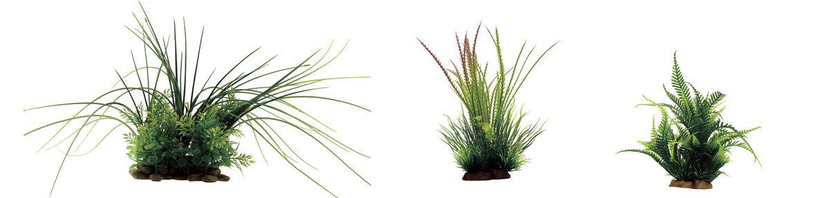 Набор растений для аквариума ArtUniq Валлиснерия, гигрофила перистонадрезанная, папоротник, высота 15-35 см, 3 шт0120710Композиция из искусственных растений ArtUniq превосходно украсит и оживит аквариум.Растения - это важная часть любой композиции, они помогут вдохнуть жизнь в ландшафт любого аквариума или террариума. А их сходствос природными порадует даже самых взыскательных ценителей.