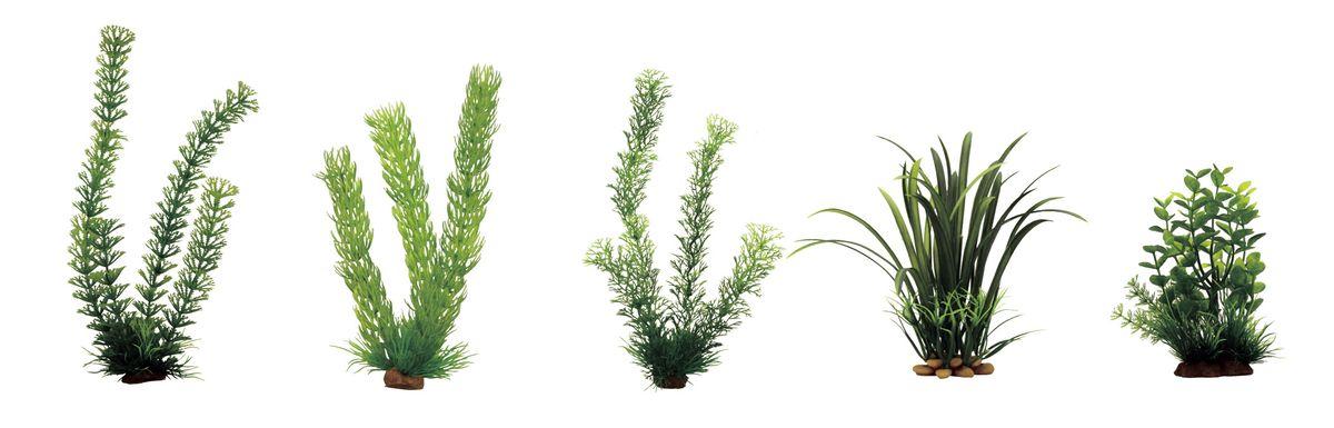 Набор растений для аквариума ArtUniq Амбулия, роголистник, перистолистник, офиопогон, бакопа, высота 15-35 см, 5 шт0120710Композиция из искусственных растений ArtUniq превосходно украсит и оживит аквариум.Растения - это важная часть любой композиции, они помогут вдохнуть жизнь в ландшафт любого аквариума или террариума. А их сходствос природными порадует даже самых взыскательных ценителей.