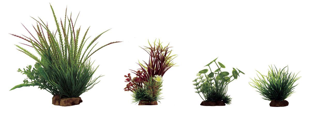 Растение для аквариума ArtUniq Гигрофила перистонадрезанная, лагаросифон мадагаскарский красный, щитолистник, лилеопсис, высота 8-23 см, 4 шт0120710Растение для аквариума ArtUniq Гигрофила перистонадрезанная, лагаросифон мадагаскарский красный, щитолистник, лилеопсис, высота 8-23 см, 4 шт