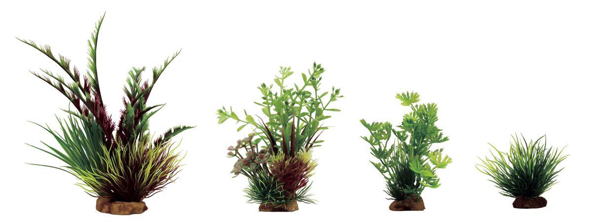 Набор растений для аквариума ArtUniq Дизиготека красно-зеленая, ротала, лютик водный, лилеопсис, высота 8-23 см, 4 шт0120710Композиция из искусственных растений ArtUniq превосходно украсит и оживит аквариум.Растения - это важная часть любой композиции, они помогут вдохнуть жизнь в ландшафт любого аквариума или террариума. А их сходствос природными порадует даже самых взыскательных ценителей.