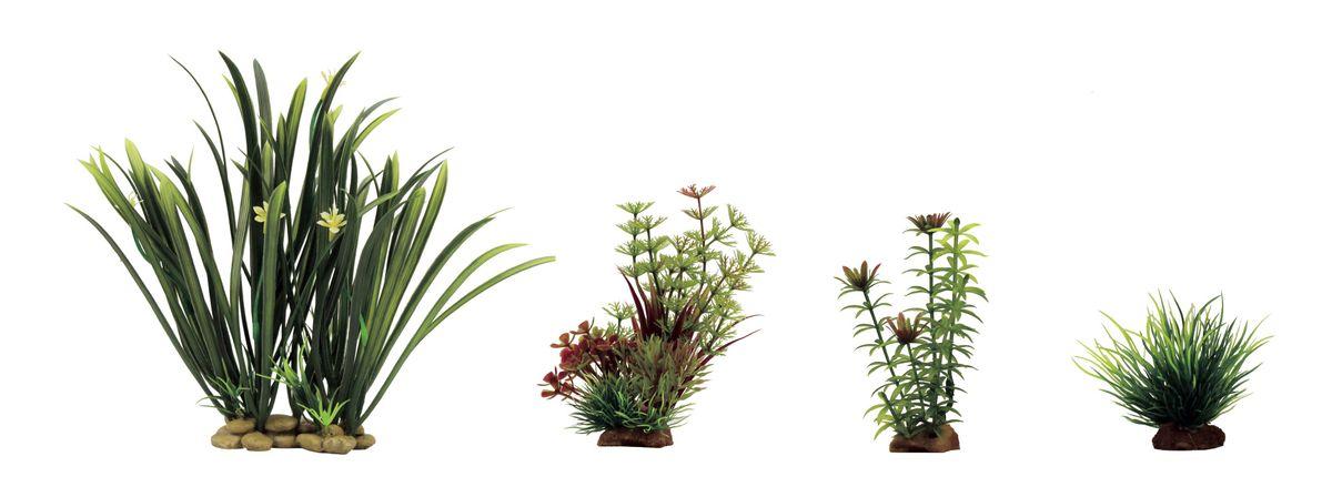 Набор растений для аквариума ArtUniq Офиопогон, амбулия, элодея, лилеопсис, высота 8-23 см, 4 шт0120710Композиция из искусственных растений ArtUniq превосходно украсит и оживит аквариум.Растения - это важная часть любой композиции, они помогут вдохнуть жизнь в ландшафт любого аквариума или террариума. А их сходствос природными порадует даже самых взыскательных ценителей.