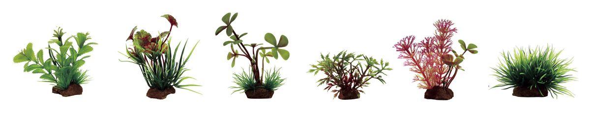 Набор растений для аквариума ArtUniq Прозерпинака, щитолистник, марсилия, гигрофила синнема, кабомба красная, лилеопсис, высота 7-10 см, 4 шт0120710Композиция из искусственных растений ArtUniq превосходно украсит и оживит аквариум.Растения - это важная часть любой композиции, они помогут вдохнуть жизнь в ландшафт любого аквариума или террариума. А их сходствос природными порадует даже самых взыскательных ценителей.