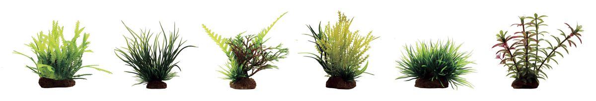 Растение для аквариума ArtUniq Мох, ситняг, папоротник, майяка, лилеопсис, элодея, высота 7-10 см, 6 штART-1170403Композиция из искусственных растений ArtUniq превосходно украсит и оживит аквариум.Растения - это важная часть любой композиции, они помогут вдохнуть жизнь в ландшафт любого аквариума или террариума. А их сходство с природными порадует даже самых взыскательных ценителей.