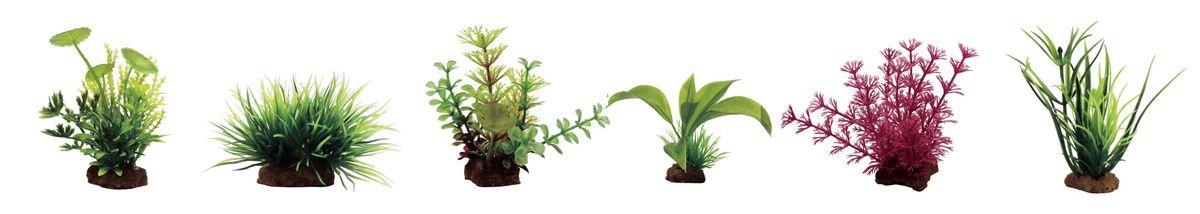 Набор растений для аквариума ArtUniq Лютик водный, лилеопсис, амбулия, альтернантера бетзикиана, кабомба красная, лагаросифон, высота 7-10 см, 6 шт0120710Композиция из искусственных растений ArtUniq превосходно украсит и оживит аквариум.Растения - это важная часть любой композиции, они помогут вдохнуть жизнь в ландшафт любого аквариума или террариума. Лучше всего это сделают яркие и сочные цвета искусственных растений серии ArtPlants. А их сходствос природными порадует даже самых взыскательных ценителей.