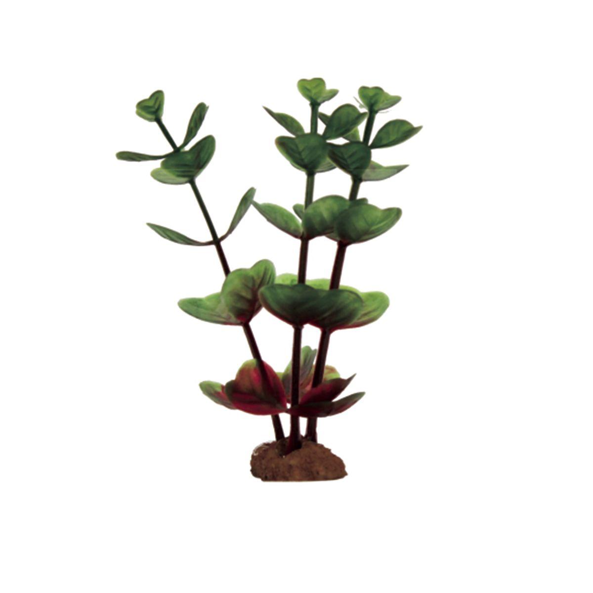 Растение для аквариума ArtUniq Бакопа крано-зеленая, высота 10 см, 6 шт0120710Растение для аквариума ArtUniq Бакопа крано-зеленая, высота 10 см, 6 шт