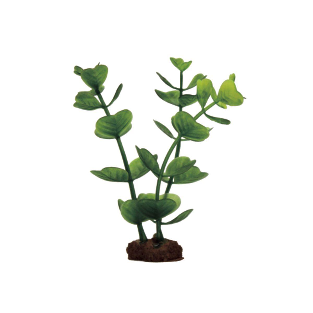 Растение для аквариума ArtUniq Бакопа, высота 10 см, 6 шт0120710Композиция из искусственных растений ArtUniq превосходно украсит и оживит аквариум.Растения - это важная часть любой композиции, они помогут вдохнуть жизнь в ландшафт любого аквариума или террариума. А их сходствос природными порадует даже самых взыскательных ценителей.