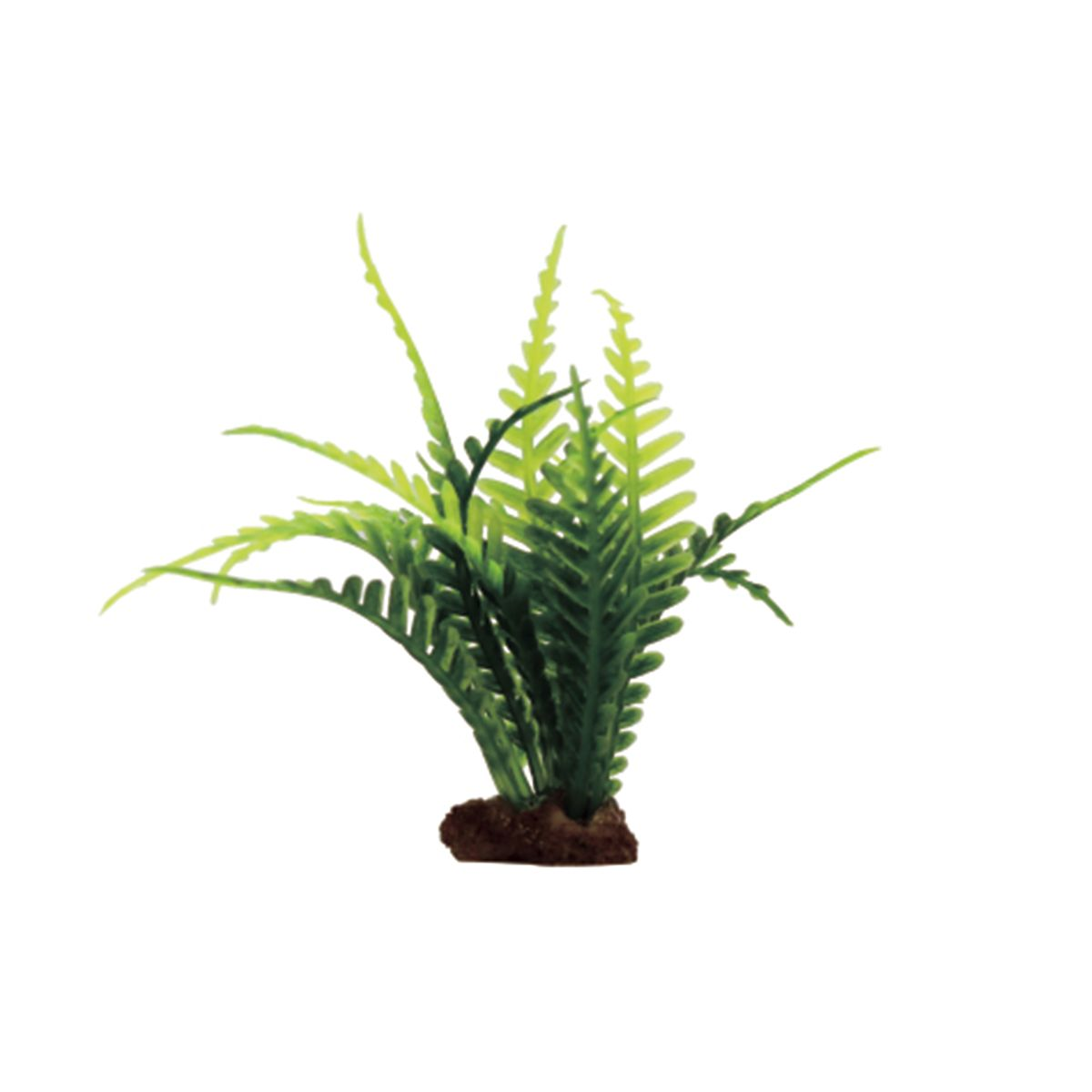 Растение для аквариума ArtUniq Папоротник, высота 10 см, 6 шт0120710Композиция из искусственных растений ArtUniq превосходно украсит и оживит аквариум.Растения - это важная часть любой композиции, они помогут вдохнуть жизнь в ландшафт любого аквариума или террариума. Лучше всего это сделают яркие и сочные цвета искусственных растений серии ArtPlants. А их сходствос природными порадует даже самых взыскательных ценителей.