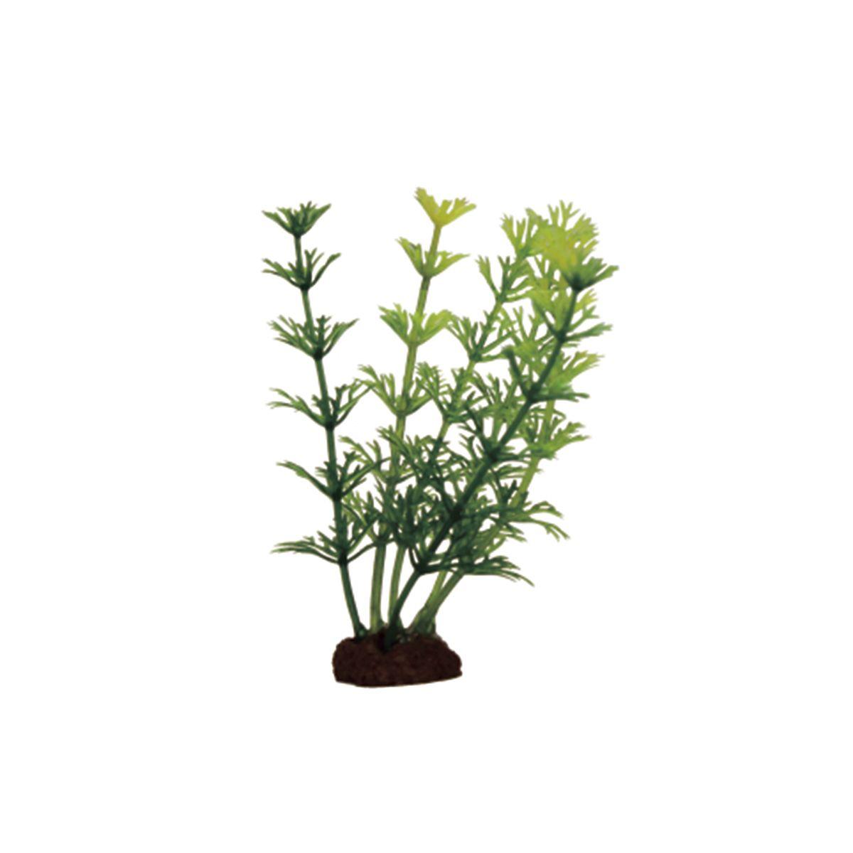 Растение для аквариума ArtUniq Кабомба, высота 10 см, 6 шт0120710Композиция из искусственных растений ArtUniq превосходно украсит и оживит аквариум.Растения - это важная часть любой композиции, они помогут вдохнуть жизнь в ландшафт любого аквариума или террариума. А их сходствос природными порадует даже самых взыскательных ценителей.