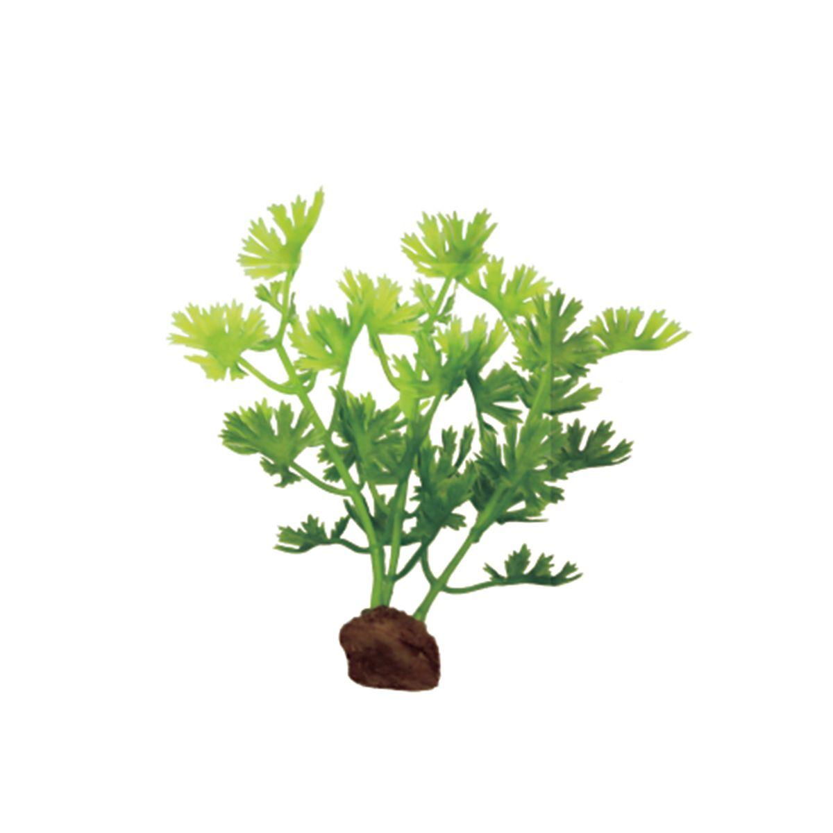 Растение для аквариума ArtUniq Лютик водный, высота 10 см, 6 шт0120710Растение для аквариума ArtUniq Лютик водный, высота 10 см, 6 шт