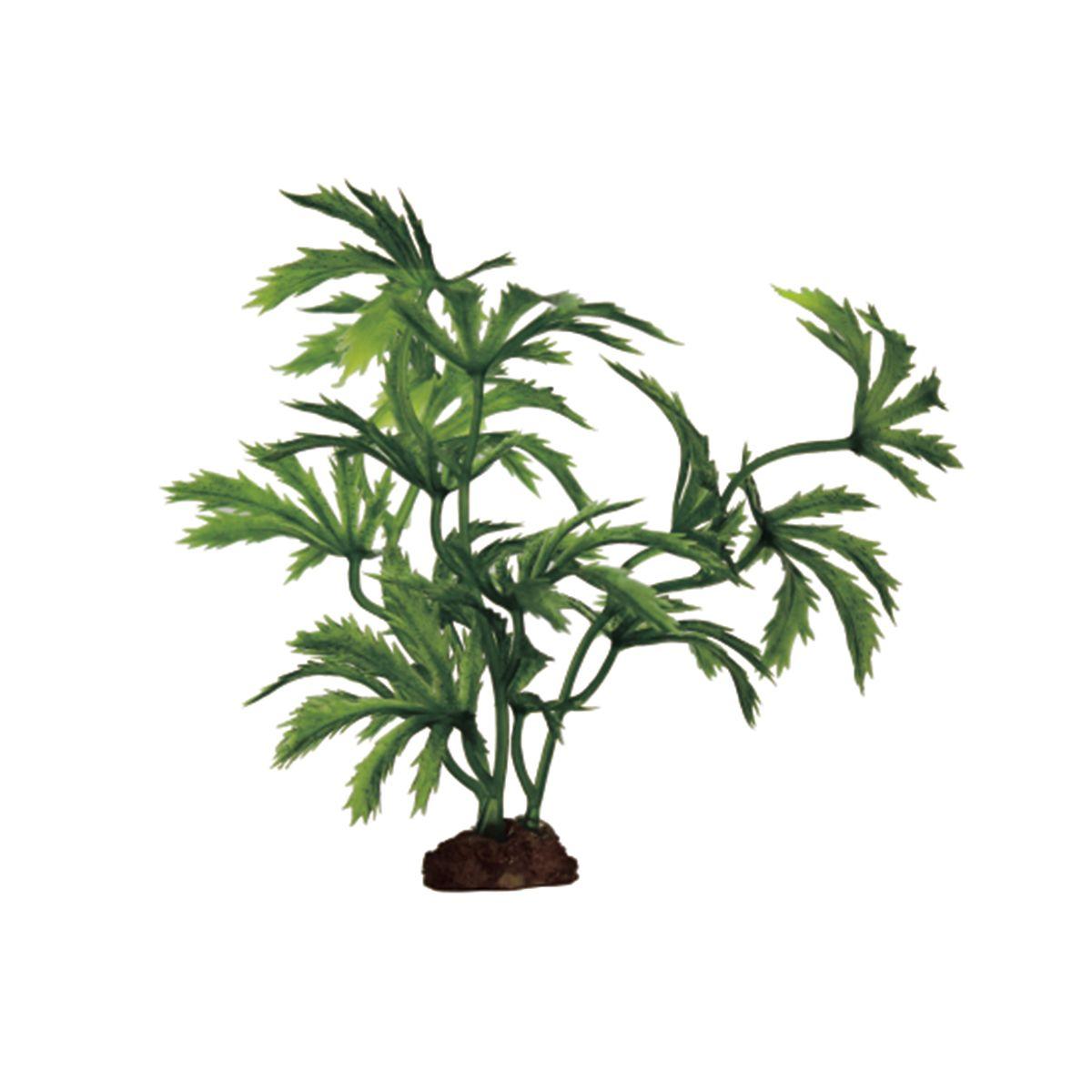 Растение для аквариума ArtUniq Абутилон, высота 10 см, 6 шт0120710Композиция из искусственных растений ArtUniq превосходно украсит и оживит аквариум.Растения - это важная часть любой композиции, они помогут вдохнуть жизнь в ландшафт любого аквариума или террариума. А их сходствос природными порадует даже самых взыскательных ценителей.