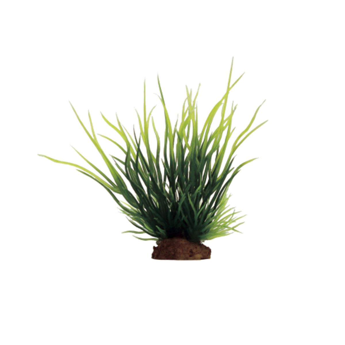 Растение для аквариума ArtUniq Лилеопсис, высота 10 см, 6 штART-1170518Композиция из искусственных растений ArtUniq превосходно украсит и оживит аквариум.Растения - это важная часть любой композиции, они помогут вдохнуть жизнь в ландшафт любого аквариума или террариума. А их сходствос природными порадует даже самых взыскательных ценителей.