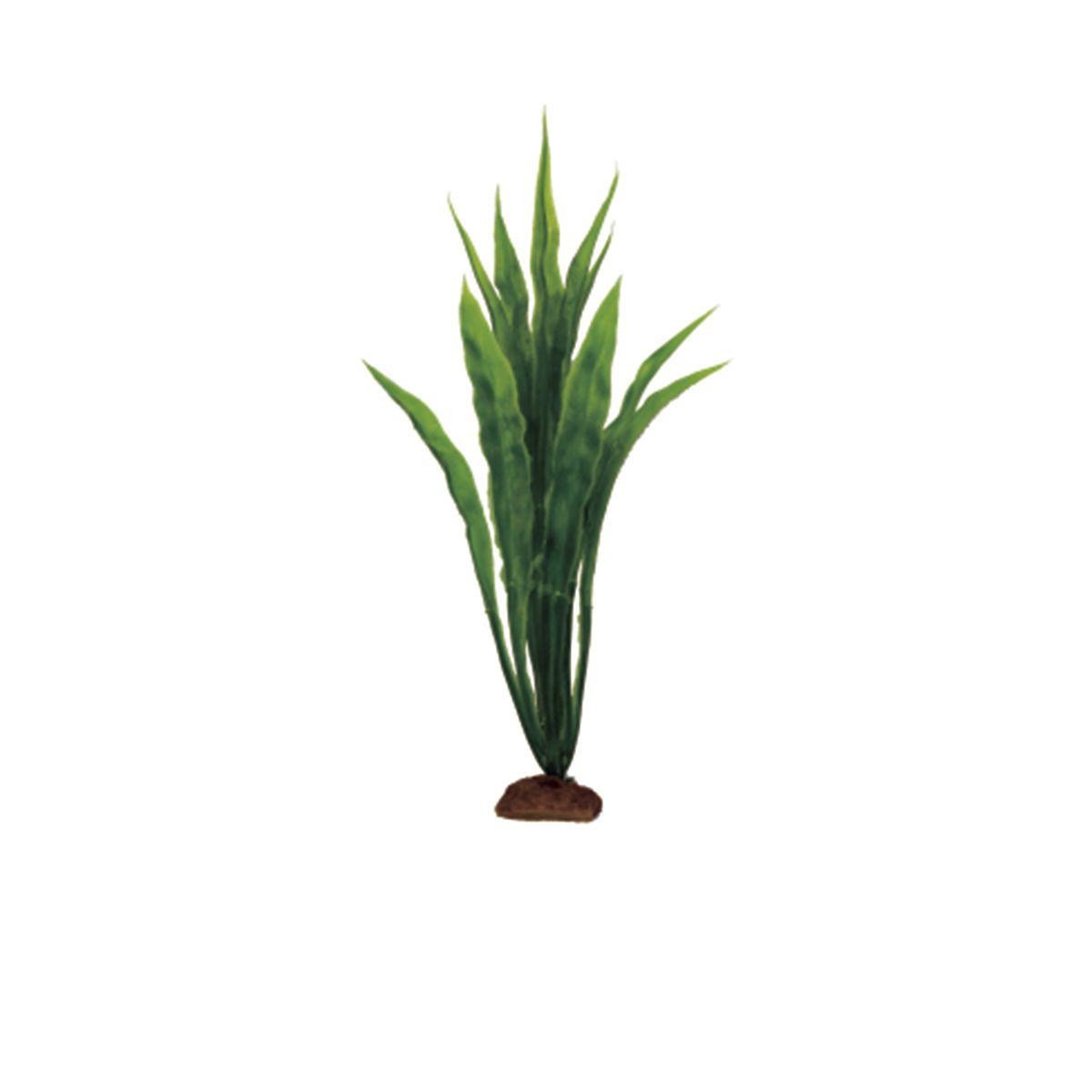Растение для аквариума ArtUniq Эхинодорус боливийский, высота 12 см, 6 шт0120710Композиция из искусственных растений ArtUniq превосходно украсит и оживит аквариум.Растения - это важная часть любой композиции, они помогут вдохнуть жизнь в ландшафт любого аквариума или террариума. А их сходствос природными порадует даже самых взыскательных ценителей.