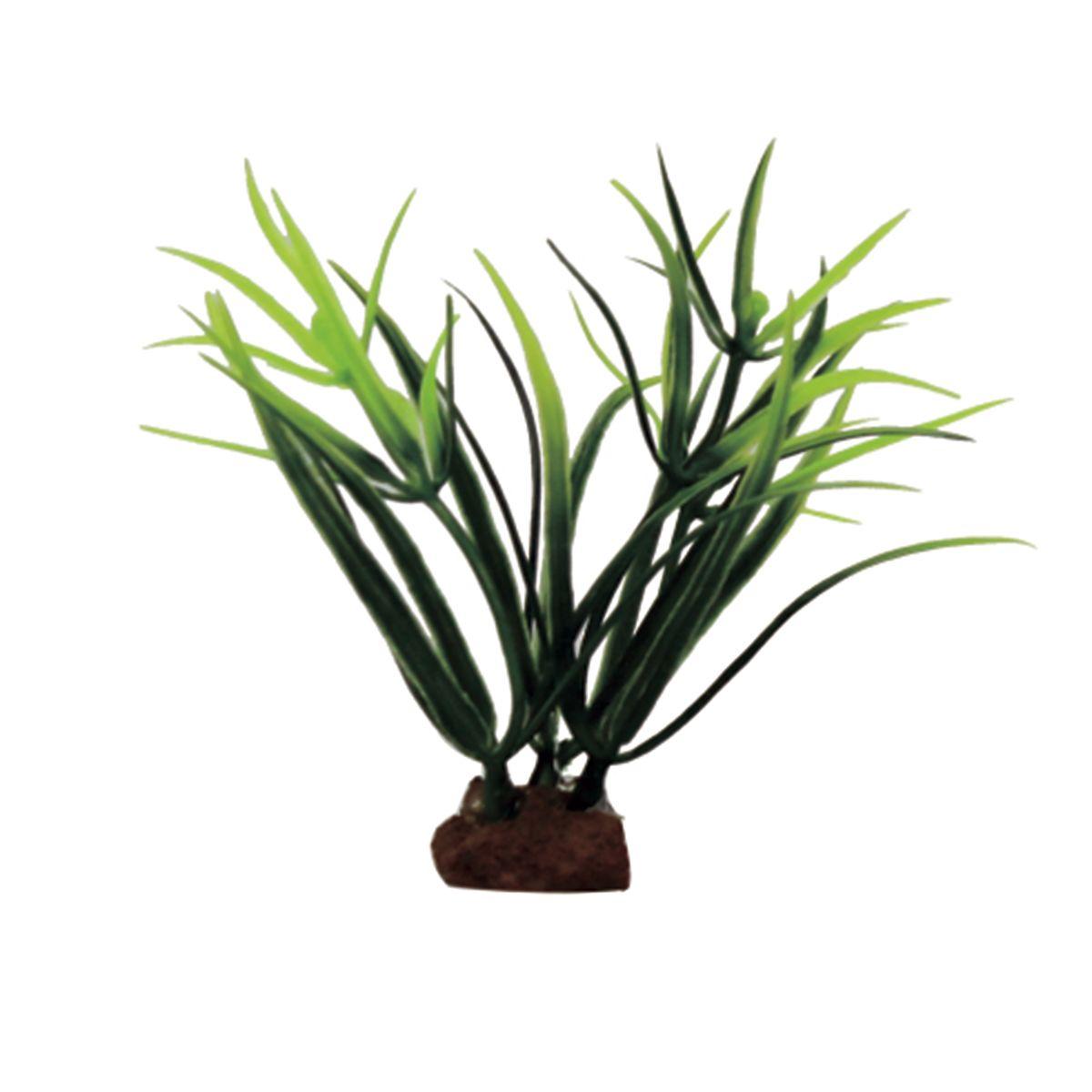 Растение для аквариума ArtUniq Лагаросифон мадагаскарский , высота 10 см, 6 шт0120710Композиция из искусственных растений ArtUniq превосходно украсит и оживит аквариум.Растения - это важная часть любой композиции, они помогут вдохнуть жизнь в ландшафт любого аквариума или террариума. Лучше всего это сделают яркие и сочные цвета искусственных растений серии ArtPlants. А их сходствос природными порадует даже самых взыскательных ценителей.