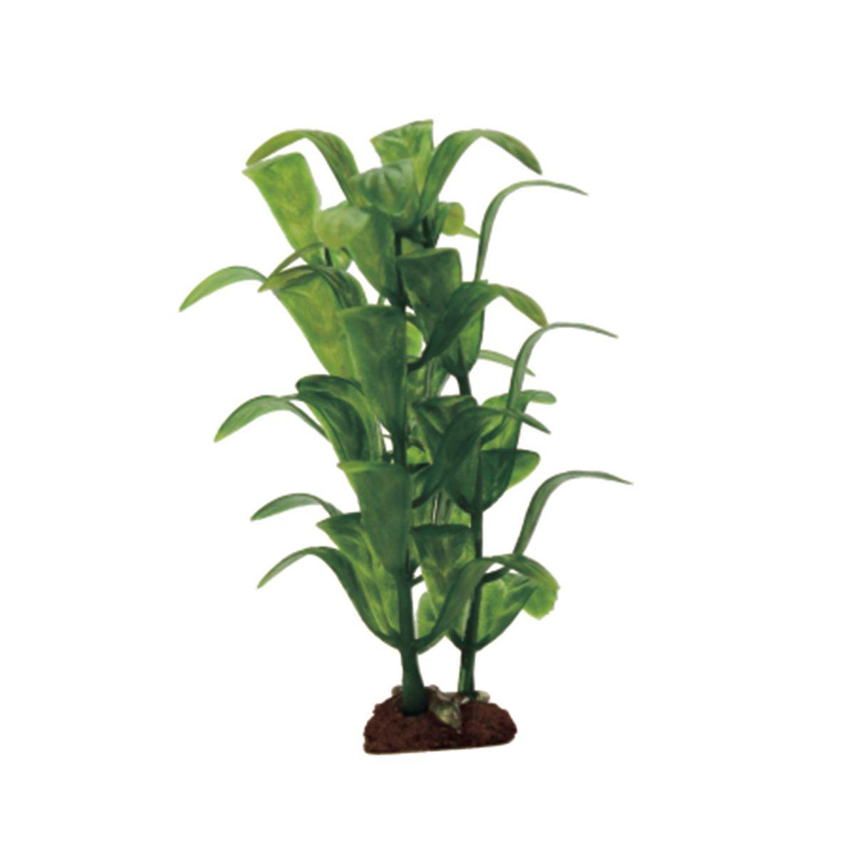 Растение для аквариума ArtUniq Стаурогин, высота 10 см, 6 шт0120710Композиция из искусственных растений ArtUniq превосходно украсит и оживит аквариум.Растения - это важная часть любой композиции, они помогут вдохнуть жизнь в ландшафт любого аквариума или террариума. А их сходствос природными порадует даже самых взыскательных ценителей.