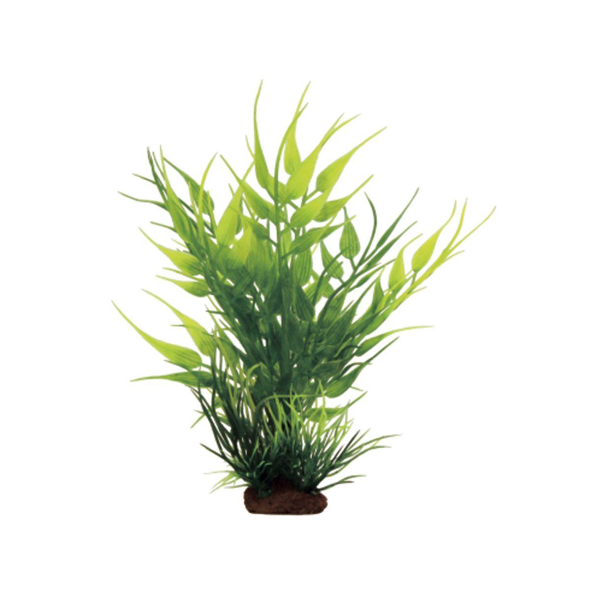 Растение для аквариума ArtUniq Бамбук, высота 10 см, 6 штART-1170531Композиция из искусственных растений ArtUniq превосходно украсит и оживит аквариум.Растения - это важная часть любой композиции, они помогут вдохнуть жизнь в ландшафт любого аквариума или террариума. А их сходствос природными порадует даже самых взыскательных ценителей.