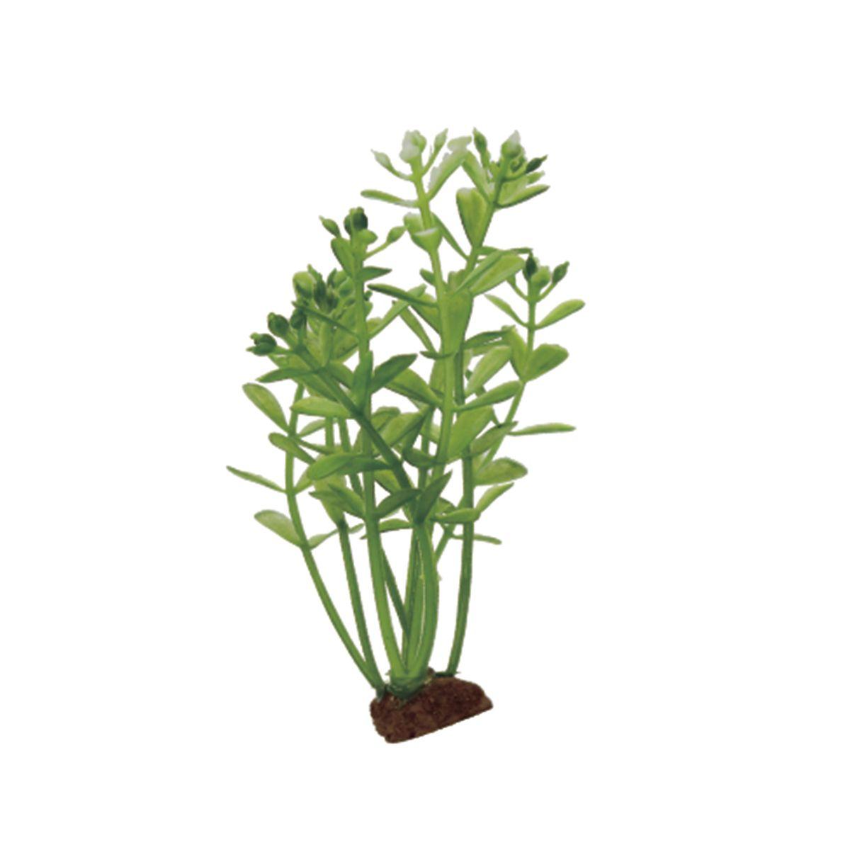 Растение для аквариума ArtUniq Ротала, высота 10 см, 6 шт0120710Композиция из искусственных растений ArtUniq превосходно украсит и оживит аквариум.Растения - это важная часть любой композиции, они помогут вдохнуть жизнь в ландшафт любого аквариума или террариума. А их сходствос природными порадует даже самых взыскательных ценителей.