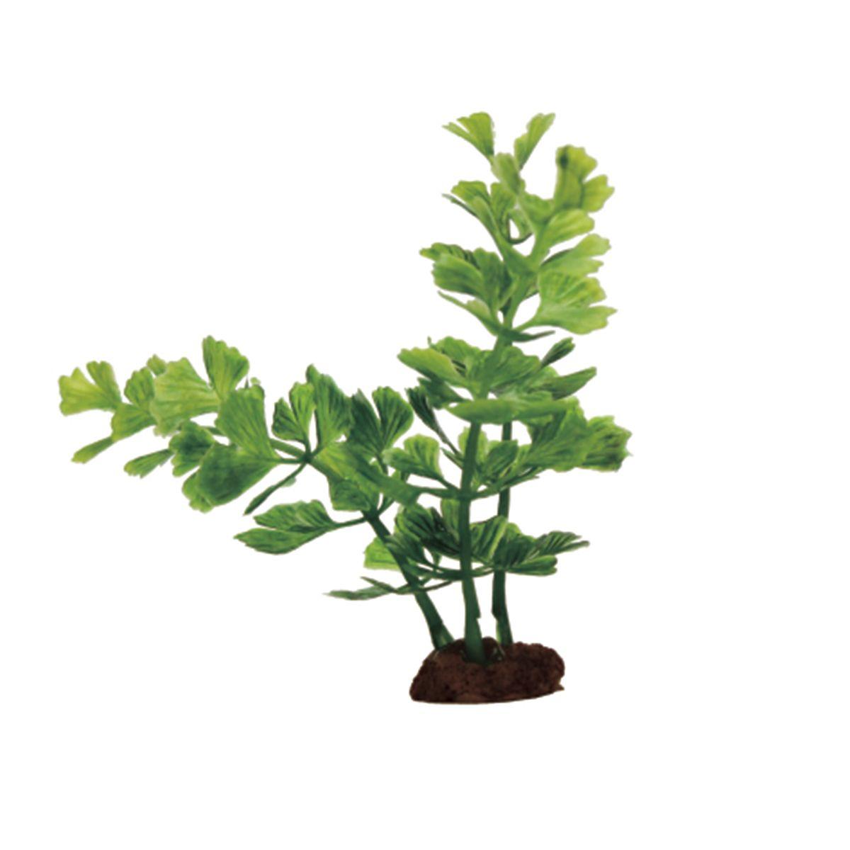 Растение для аквариума ArtUniq Кариота, высота 10 см, 6 шт0120710Композиция из искусственных растений ArtUniq превосходно украсит и оживит аквариум.Растения - это важная часть любой композиции, они помогут вдохнуть жизнь в ландшафт любого аквариума или террариума. А их сходствос природными порадует даже самых взыскательных ценителей.