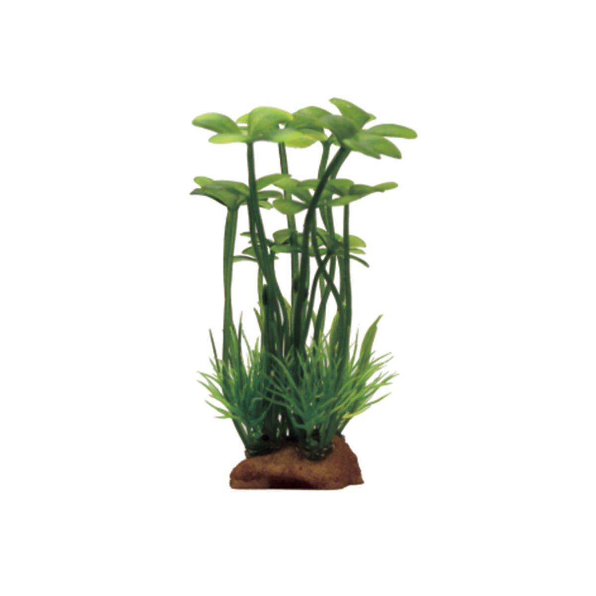 Растение для аквариума ArtUniq Марсилия, высота 10 см, 6 шт0120710Композиция из искусственных растений ArtUniq превосходно украсит и оживит аквариум.Растения - это важная часть любой композиции, они помогут вдохнуть жизнь в ландшафт любого аквариума или террариума. Лучше всего это сделают яркие и сочные цвета искусственных растений серии ArtPlants. А их сходствос природными порадует даже самых взыскательных ценителей.