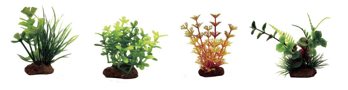 Набор растений для аквариума ArtUniq Марсилия, глоссостигма, амбулия оранжевая, лизимахия, высота 7-10 см, 4 штART-1170601Композиция из искусственных растений ArtUniq превосходно украсит и оживит аквариум.Растения - это важная часть любой композиции, они помогут вдохнуть жизнь в ландшафт любого аквариума или террариума. А их сходствос природными порадует даже самых взыскательных ценителей.