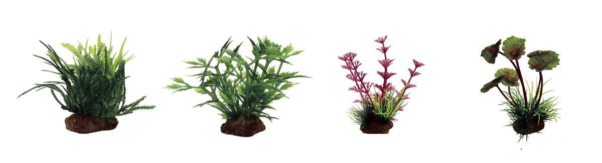 Набор растений для аквариума ArtUniq Мох, гигрофила синнема, амбулия розовая, щитолистник, высота 10 см, 4 шт0120710Композиция из искусственных растений ArtUniq превосходно украсит и оживит аквариум.Растения - это важная часть любой композиции, они помогут вдохнуть жизнь в ландшафт любого аквариума или террариума. Лучше всего это сделают яркие и сочные цвета искусственных растений серии ArtPlants. А их сходствос природными порадует даже самых взыскательных ценителей.