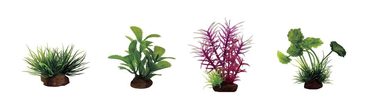 Набор растений для аквариума ArtUniq Лилеопсис, прозерпинака, погостемон розовый, щитолистник, высота 7-10 см, 4 штART-1170603Композиция из искусственных растений ArtUniq превосходно украсит и оживит аквариум.Растения - это важная часть любой композиции, они помогут вдохнуть жизнь в ландшафт любого аквариума или террариума. А их сходствос природными порадует даже самых взыскательных ценителей.
