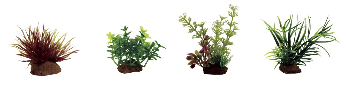 Набор растений для аквариума ArtUniq Лилеопсис красный, глоссостигма, амбулия, лагаросифон мадагаскарский, высота 7-10 см, 4 шт0120710Композиция из искусственных растений ArtUniq превосходно украсит и оживит аквариум.Растения - это важная часть любой композиции, они помогут вдохнуть жизнь в ландшафт любого аквариума или террариума. А их сходствос природными порадует даже самых взыскательных ценителей.