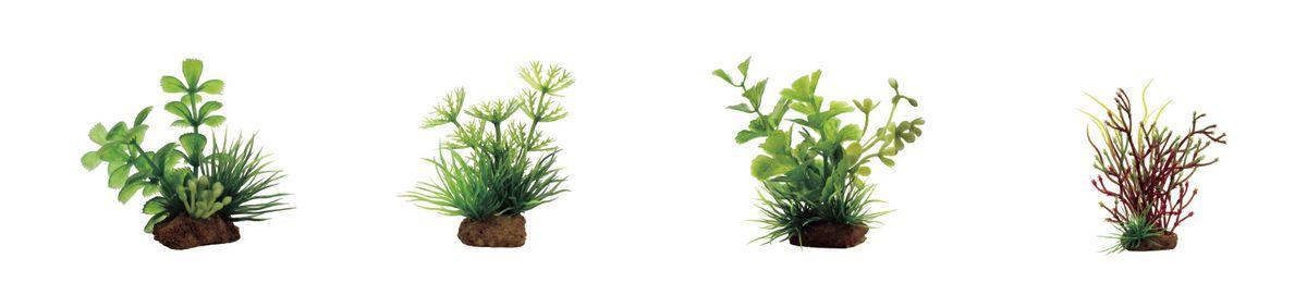 Растение для аквариума ArtUniq Прозерпинака, амбулия, кариота, блестянка, высота 7-10 см, 4 шт0120710Растение для аквариума ArtUniq Прозерпинака, амбулия, кариота, блестянка, высота 7-10 см, 4 шт