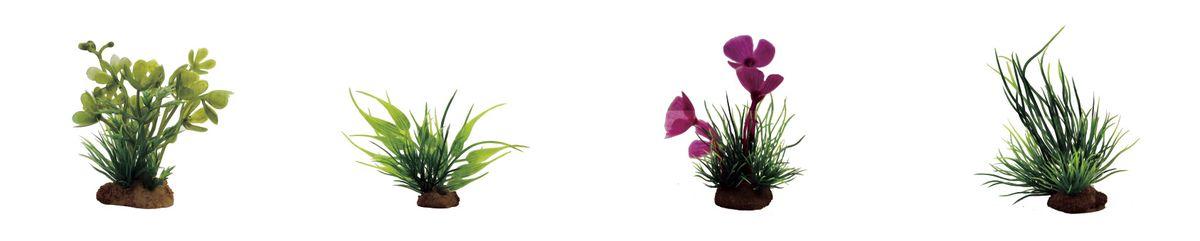 OZON.ru0120710Растение для аквариума ArtUniq Марсилия, бамбук, марсилия розовая, лилеопсис, высота 7-10 см, 4 шт