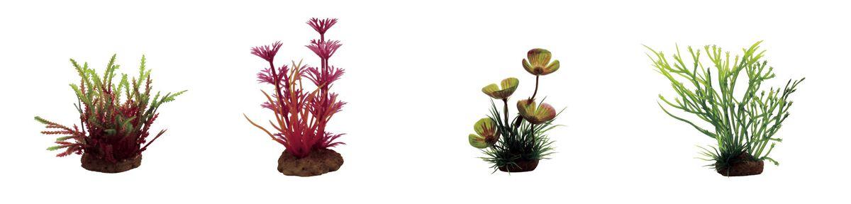 Растение для аквариума ArtUniq Мох, кабомба красная, марсилия, блестянка , высота 7-10 см, 4 шт0120710Растение для аквариума ArtUniq Мох, кабомба красная, марсилия, блестянка , высота 7-10 см, 4 шт